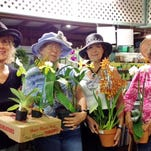 Club Briefs: Calusa Garden Club and more