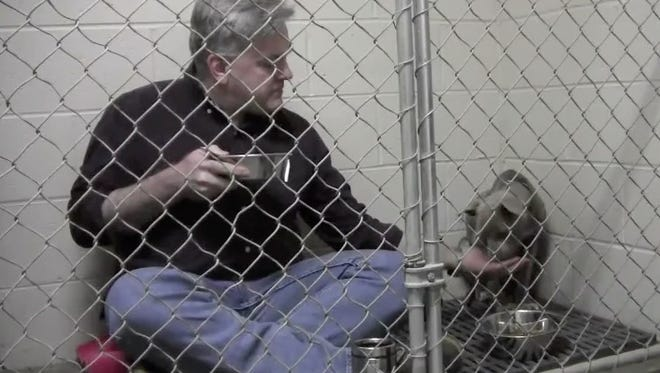 A terrified rescue dog found comfort when a Georgia veterinarian climbed into her cage and sat by her until she felt brave enough to eat her breakfast.