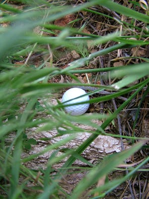 Make sure a ball is definitely out of bounds before hitting a provisional ball or it could cost your score dearly.