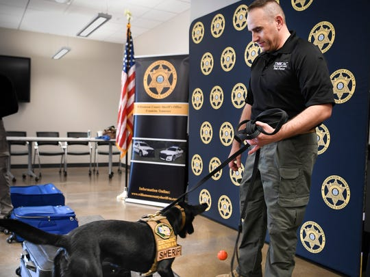 Remi, a two-year-old black Labrador retriever that specializes in smelling electronics, demonstrates how she will help the Williamson County Sheriff's Office find hidden electronics at the Public Safety Center Friday, May 18, 2018, in Franklin, Tenn. Remi is the first electronic detection dog to be placed into service in Tennessee.