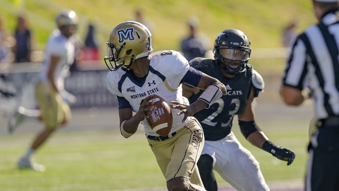 Montana State quarterback Chris Murray was last year's Big Sky freshman of the year