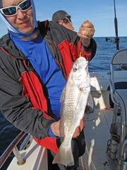 John Allen caught this unusually large croaker while fishing about 60 miles offshore.
