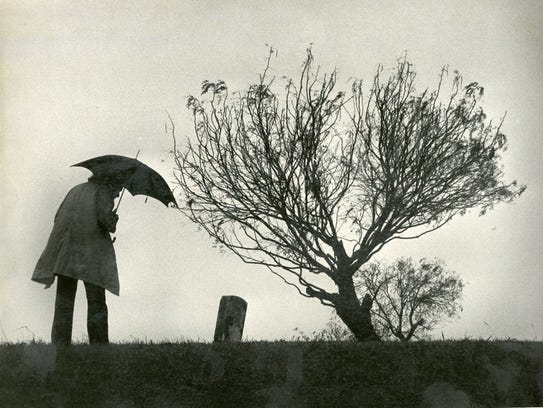 A woman walks through Old Bayview Cemetery in January