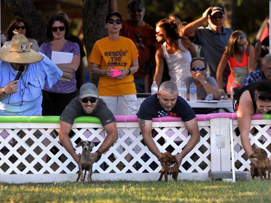 Abilene Dog Park
