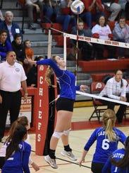 Livonia Ladywood's Madison Benoit hammers the ball
