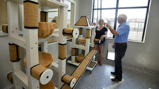 Pam Volk, left, director of the Margaret J. Maclean Animal Adoption Center, talks with Bob James, who sits on the board of directors for the center, about the center's communal cat room on Thursday.