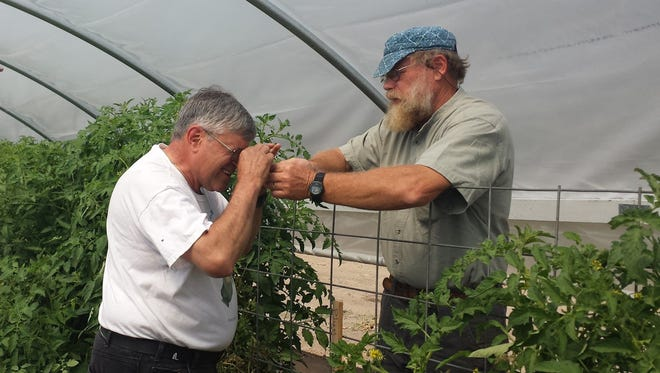 A participant learns to identify pests at a Western Nevada Specialty Crop Institute workshop.