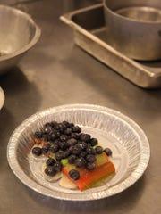 Fresh blueberries top rhubarb as this cobbler is prepared.