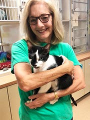 Cat care volunteer Linda Baughman enjoys cuddling Grizzley.