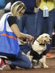 Paula Godwin holds Todd the dog, who went viral after