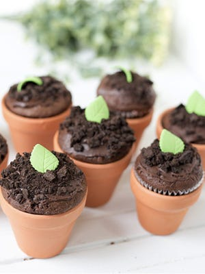 Celebrate springtime with super cute seedling cupcakes.