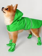 Jelly Wellies rain boots ($16.68/jellywellies.com) come in handy, since they are water-resistant, breathable, offer paw protection and to boot color coordinate nicely with the company's dog raincoats ($20), so your pup is the best dressed on the block. It comes in six colors.