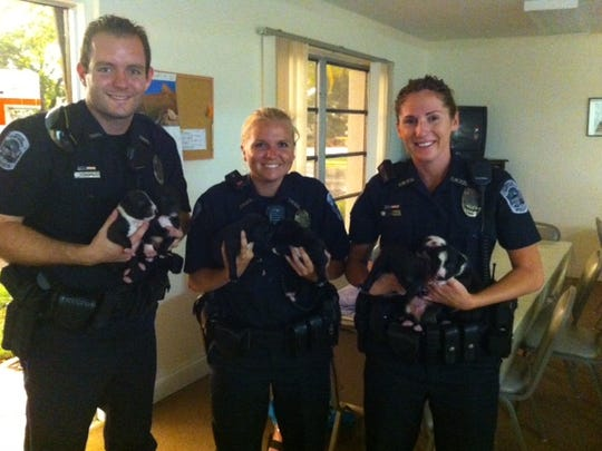 Officer hold puppies found in a hot car.