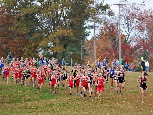 The start of the girls Division III Cross Country District championships at Amann Reservoir in Galion.