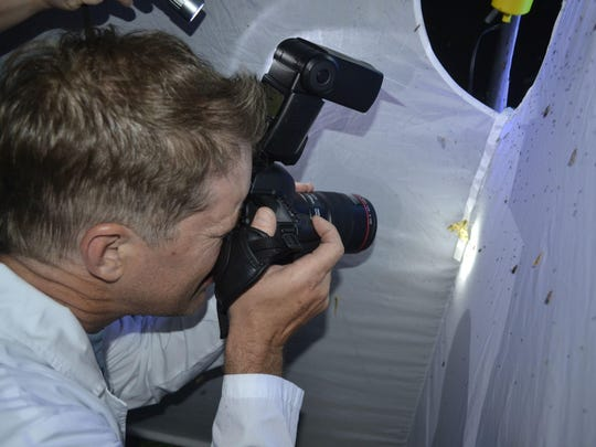 Presenter Jeff Schmuki takes photographs of moths that landed on a white tent illuminated by solar-powered ultraviolet lights June 10 during the opening-night event for The Moth Project at the Tsyunhehkwa agricultural center in Oneida.