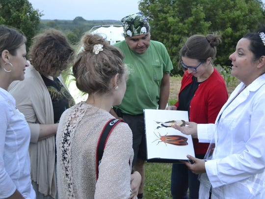 Clockwise from right, presenter Wendy DesChene, Maddie and Christine Cremer of Little Chute, Feona Feria of Green Bay, Tsyunhehkwa director Jeff Metoxen and St. Norbert College assistant art professor Katie Ries look at pictures of moths as they wait for the winged insects to appear at darkness June 10 as part of The Moth Project at the Tsyunhehkwa agricultural center in Oneida.