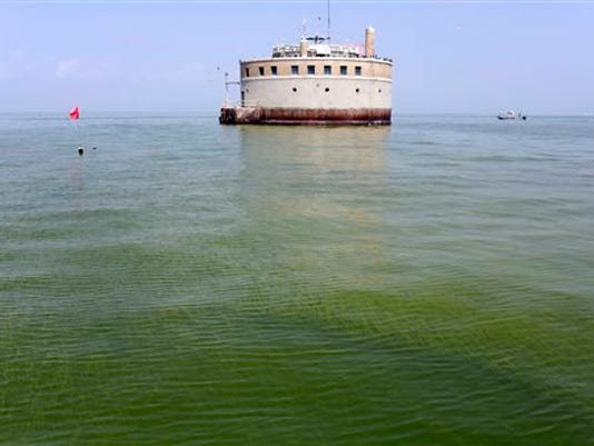 Lake Erie Algae_Mann.jpg