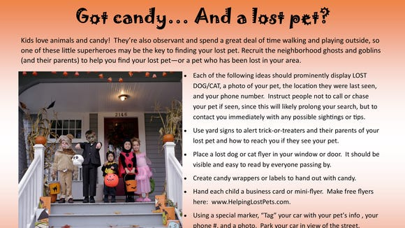 Use Halloween to help find lost pets.
