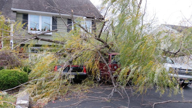 A tree landed on cars outside a Verona home on Windermere Avenue Monday, Nov. 21, 2016.
