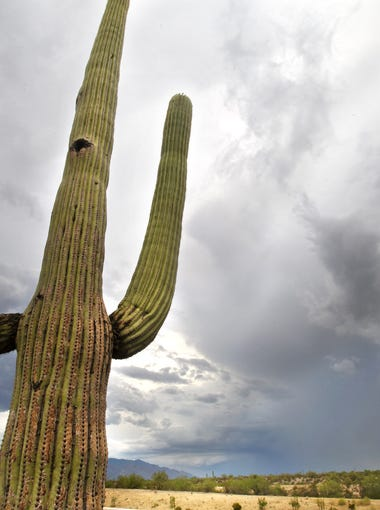 Phoenix weather can get extreme. These are the hottest, coldest, rainiest, snowiest and windiest days in the Valley.