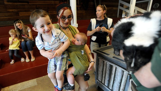 Sheena Robinson holds up her sons Grayson Sumner, 3, left, and Avedis Sumner, 7 months, so they can see the skunk that education specialist Eli Strull gave a presentation about at the Western North Carolina Nature Center on Monday.