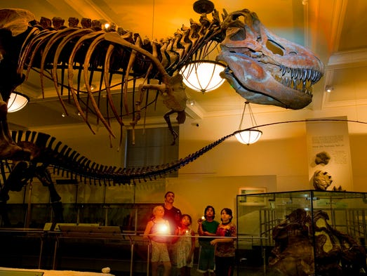 American Museum Of Natural History Summer Camp