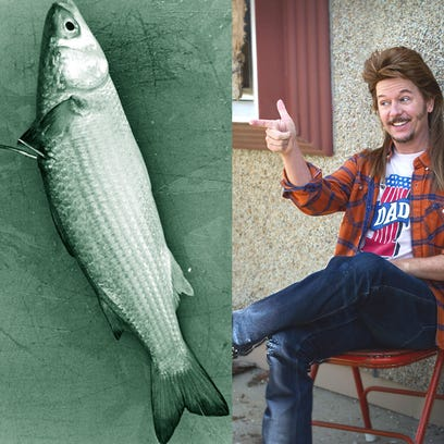One of these is a mullet. One of these is a man with