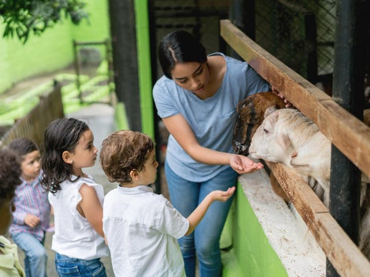 Teacher with a group of young students at an animal farm