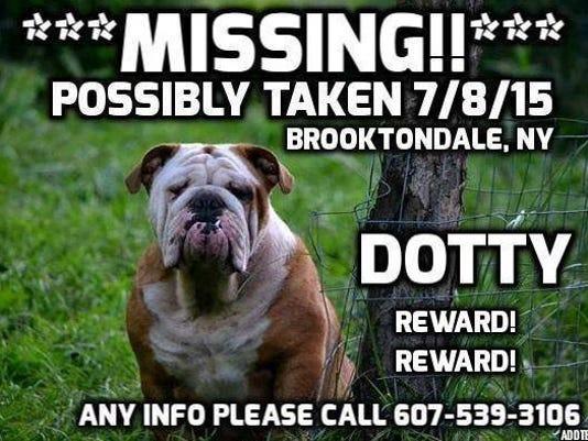 missing_dog