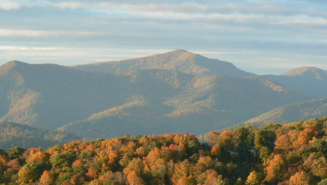 Roan Mountain in Pisgah National Forest is one of four sites that will be free on National Forest land in Western North Carolina this Saturday.