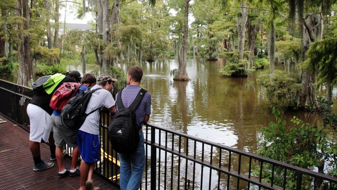 A group of UL students look out over Cypress Lake Thursday, August 28, 2014, on UL's campus in Lafayette, La.
