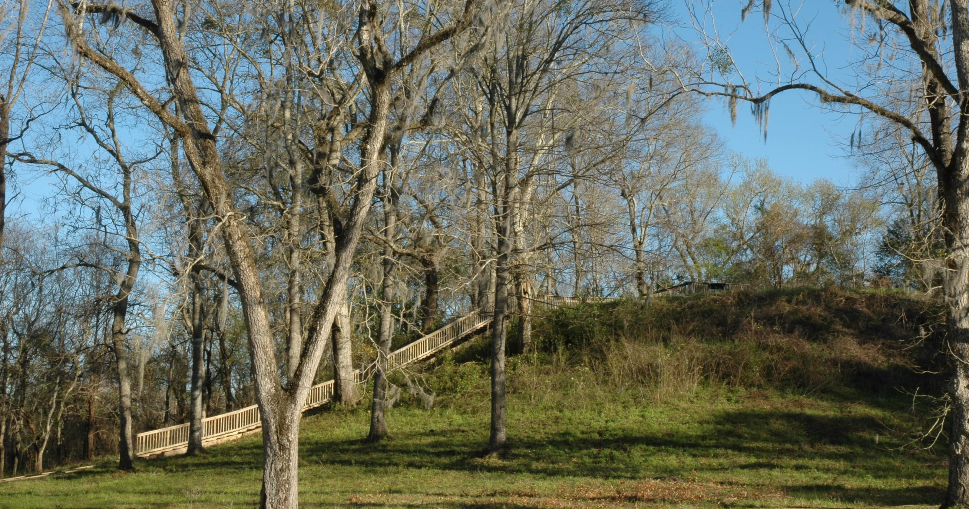 Lake Jackson Mounds reveal remnants of thriving culture