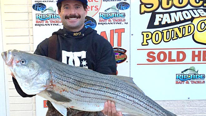"Tim Daley with a beautiful 41"", 25 lb striper that he nailed on a FRESH Riptide Rotter. He said he was getting more action on the clam and said the junk fish were hitting his bunker."
