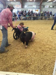 Jeremy Francis pushes his 10-year-old daughter, Madison, as she shows her pig, Wobs, at the 2015 Southern New Mexico State Fair.