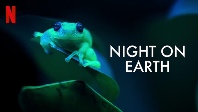 """""""Night on Earth"""" looks at natural wonders only when the sun goes down."""