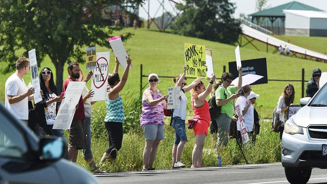 Protesters lined Minnesota Highway 55 on Saturday near the A Maze'n Farmyard in Eden Valley.