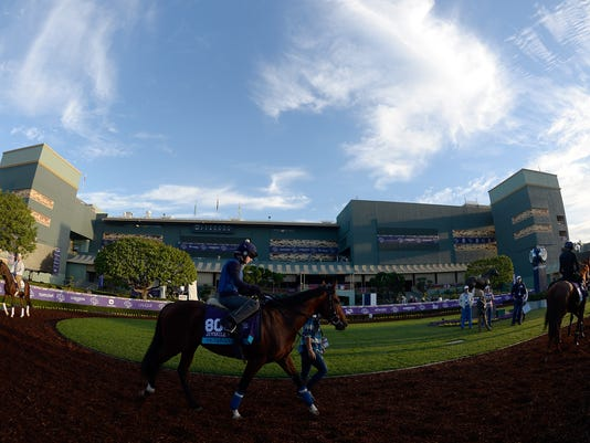 2014 Breeder's Cup - Previews
