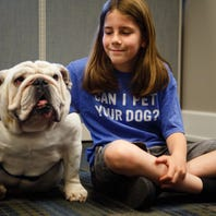 Here's the story of an Iowa boy who petted 361 dogs and has 91,000 Twitter followers