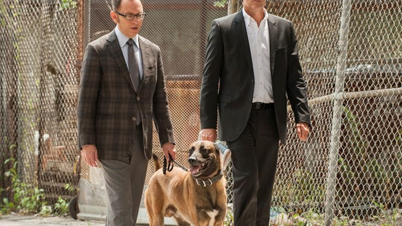 See What The Person Of Interest Dog Did This Summer