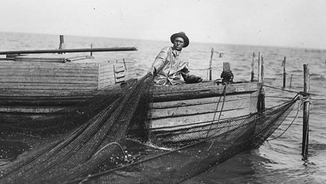 In the middle of the 19th century, Great Lakes fishing outfits favored pound nets, a long net system that involves pounding stakes into the lake bed, attaching the nets and trapping the fish in an enclosure. In this photo taken circa 1930, a fisherman hauls in a pound net.