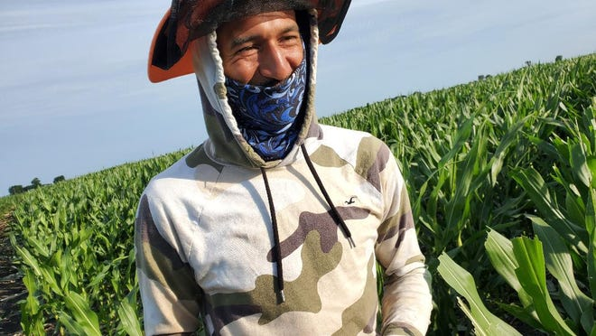 "Raymundo Camacho ""Ray"" is a checker, ensuring that female seed corn is picked 99.98% clean of tassels."
