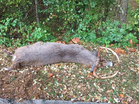 State game officials said this 10-point buck was killed