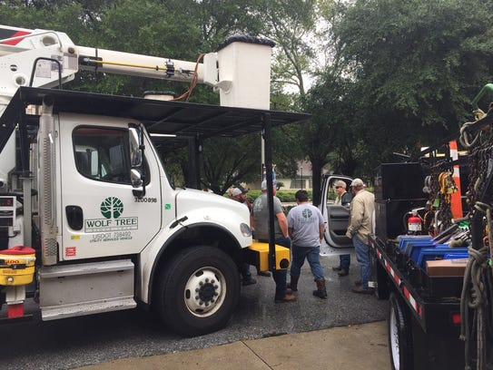 Wolf's Tree Service crew gathered in the Killearn Circle