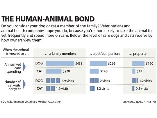 The human-animal bond graphic comparing the annually vet care spending and vet visits per year.