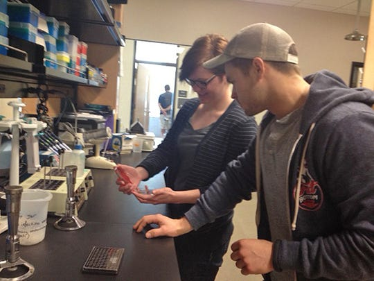 MTSU undergraduate students Kelly Saine, left, and Alex Barr conduct research in 2015.