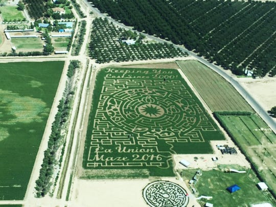 The 2016 La Union Maze is just one of the many activities that come with the price of admission.