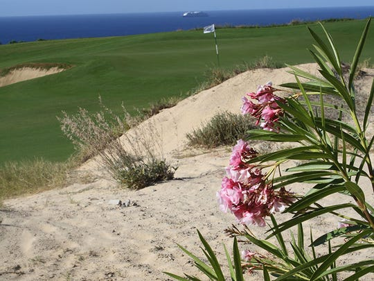 Vegetation grows in most waste bunkers at Quivira Golf Club.