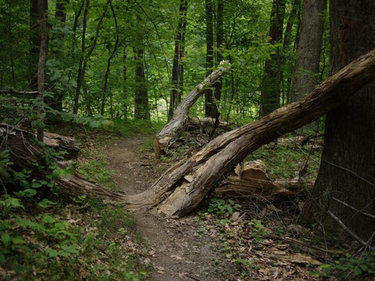 Highland Recreation Area in White lake offers loops
