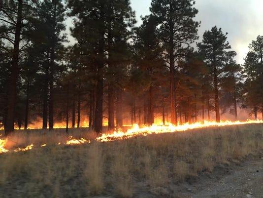 431 Fire