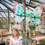 Panhandle Butterfly House preparing for this year's kaleidoscope